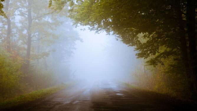 Lokalnie pokropi, miejscami będzie mglisto