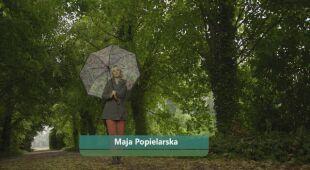 Sentymentalny ogród kolekcyjny (odc. 728 / HGTV odc. 29 seria 2019)